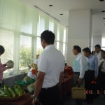 NPK農業生産法人